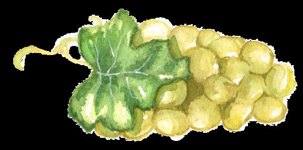 سكرابز فواكهة حصريا 2018, زينة