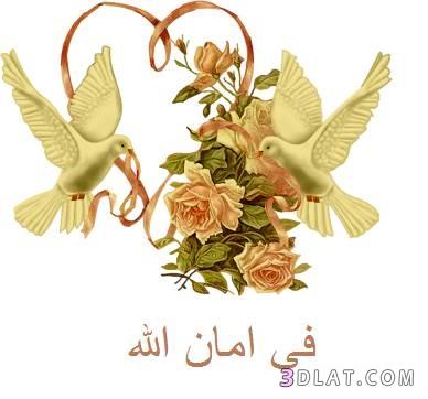 جعلناه نوراً...خالد أبوشادي الجزء الخامس (10) 3dlat.com_30_18_1c9a