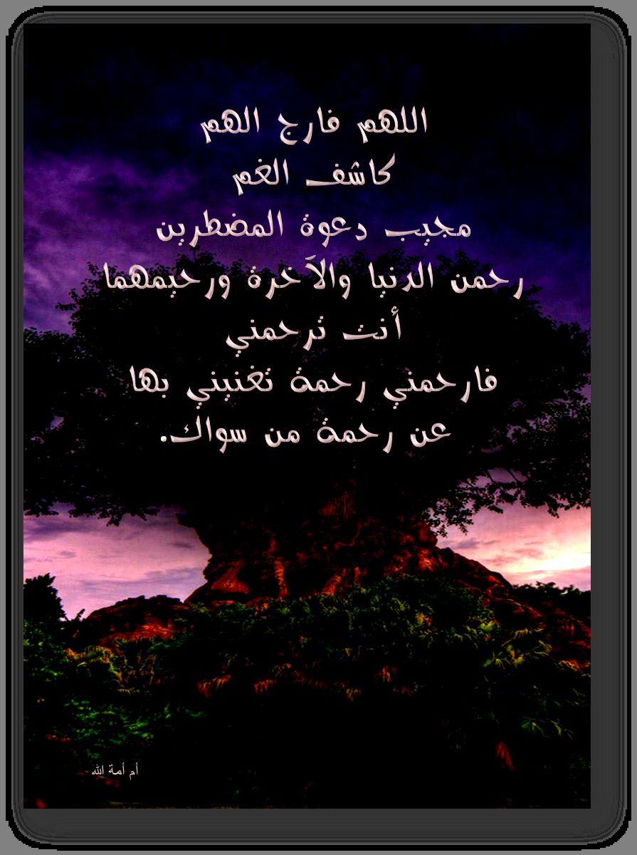 تصميمي أدعية السنة الشريفة مجموعة بطاقات 3dlat.com_30_18_d950