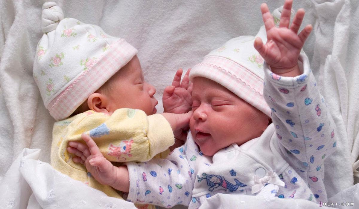 وحام التوأم يختلف الحمل واحد 3dlat.com_30_19_a3ac