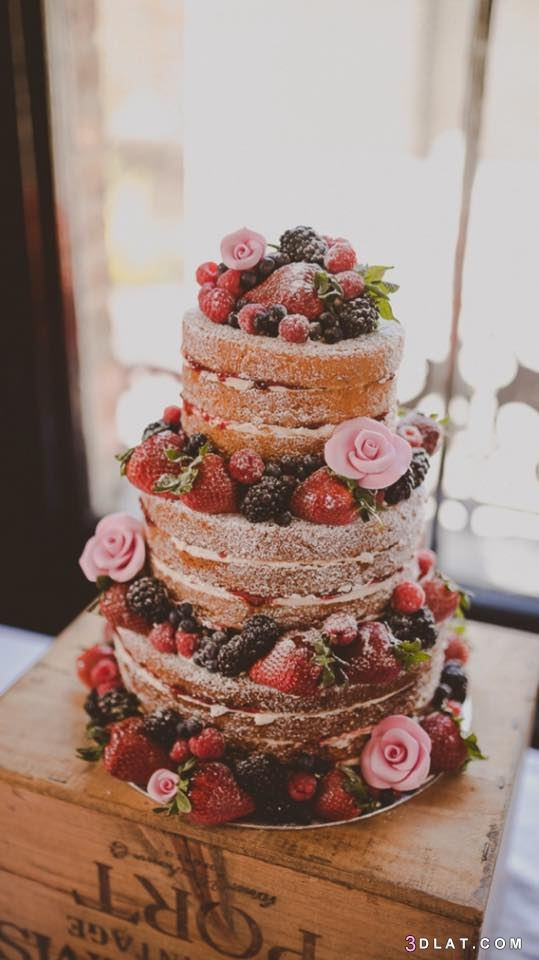 الزفاف 2019 أشكال تورتات الزفاف والمناسبات 3dlat.com_31_18_ea5d