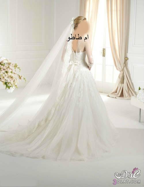 فساتين زفاف 2014 مميزه فساتين