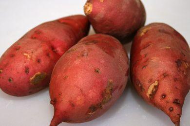 معلومات البطاطا معلومات البطاطا الحلوة