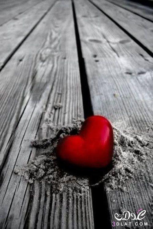 رومانسية قلوب 2019 دباديب ورود 3dlat.net_01_15_da1a
