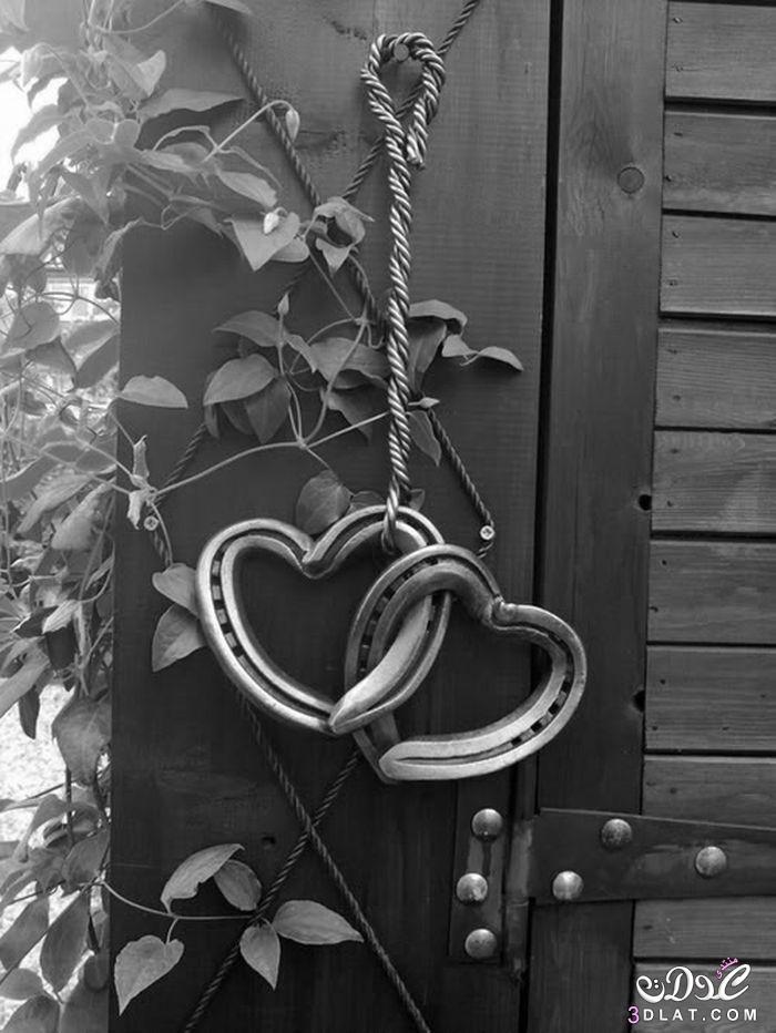 رومانسية قلوب 2019 دباديب ورود 3dlat.net_01_15_f2af