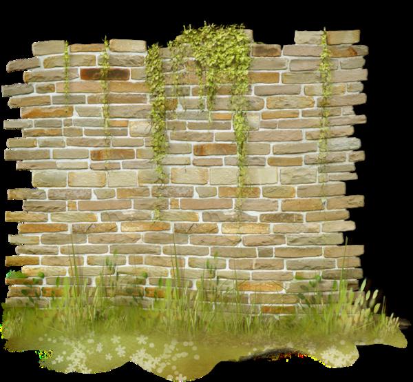 سكرابز جدار
