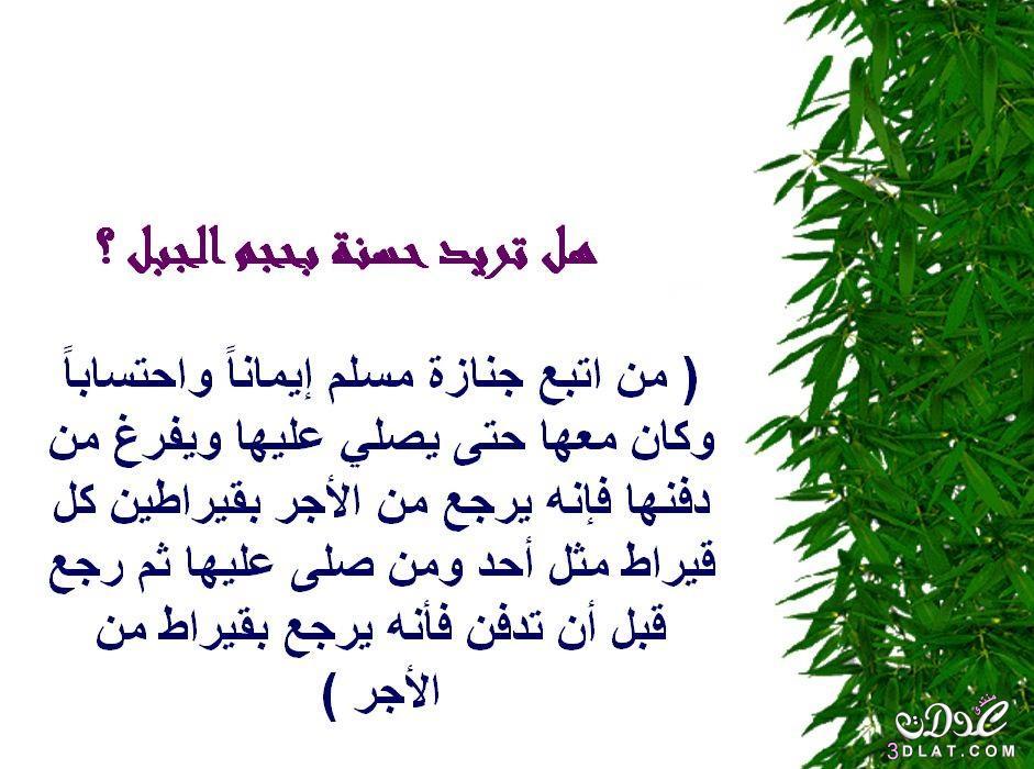 محفزات الخير 3dlat.net_05_15_2fee_5.jpg