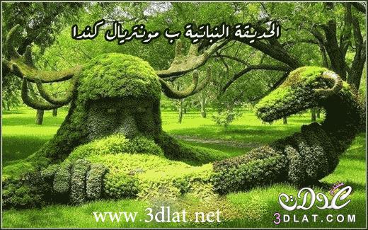 صور  طبيعية غاية في الروعة والجمال من تجميعي 3dlat.net_05_15_582d
