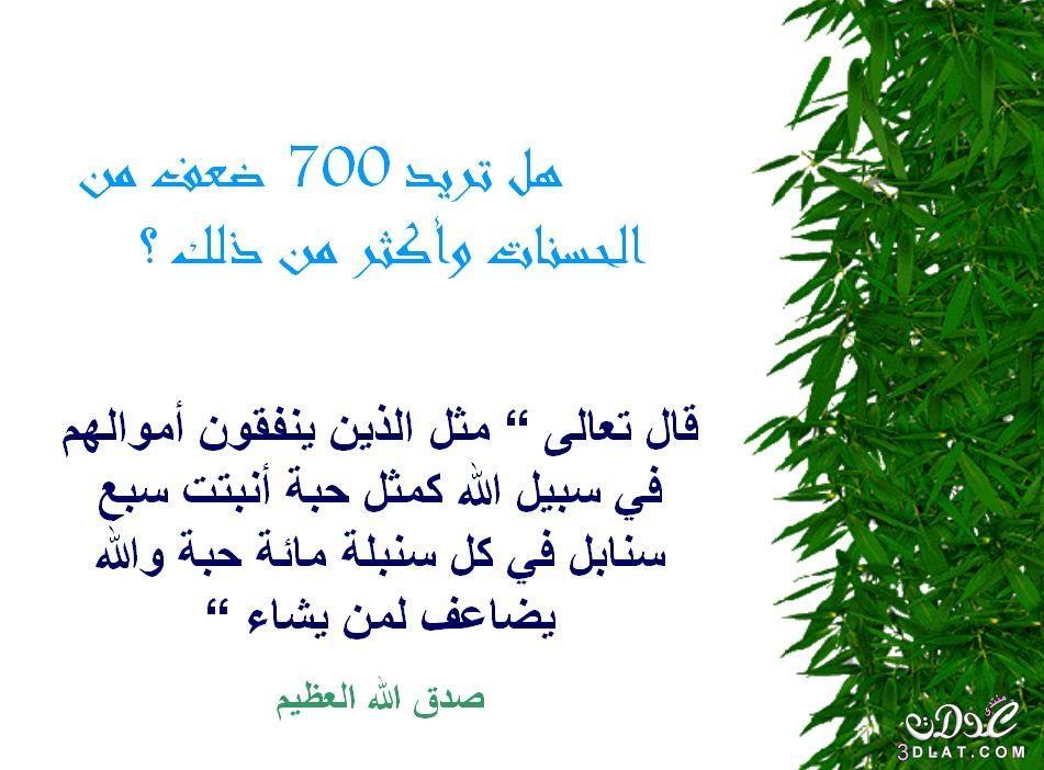 محفزات الخير 3dlat.net_05_15_b727_13.jpg