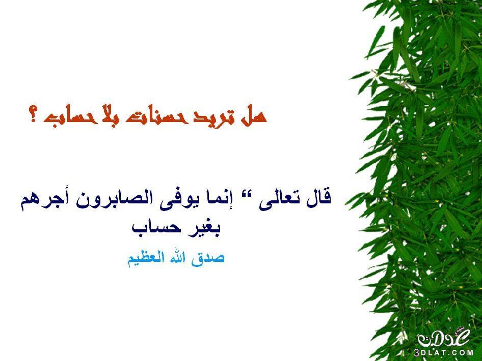 محفزات الخير 3dlat.net_05_15_b727_14.jpg