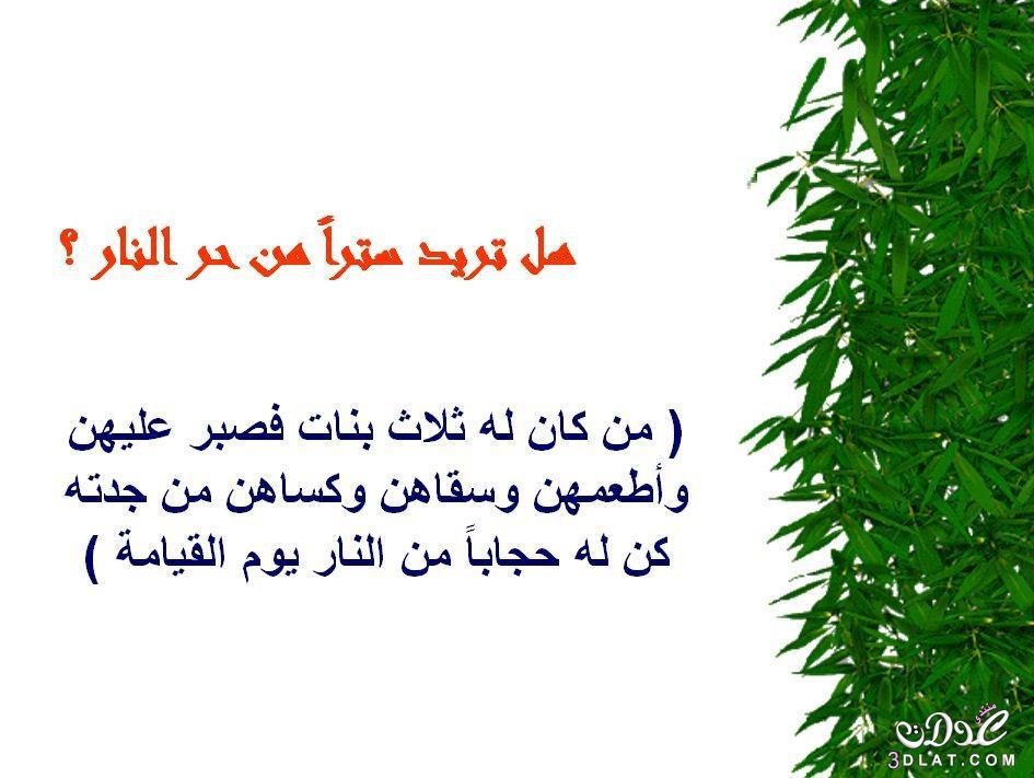 محفزات الخير 3dlat.net_05_15_b727_15.jpg