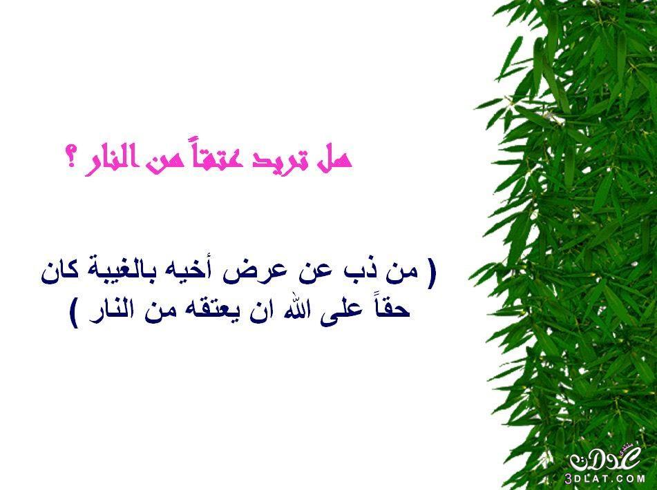 محفزات الخير 3dlat.net_05_15_b727_16.jpg