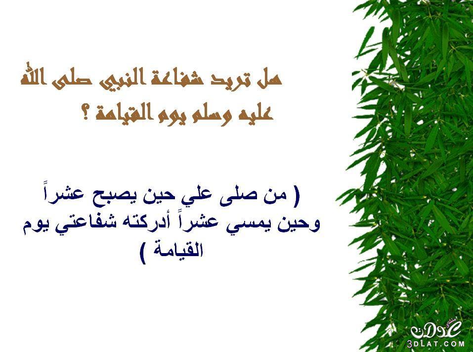 محفزات الخير 3dlat.net_05_15_b727_17.jpg