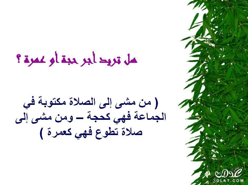 محفزات الخير 3dlat.net_05_15_dc91_22.jpg