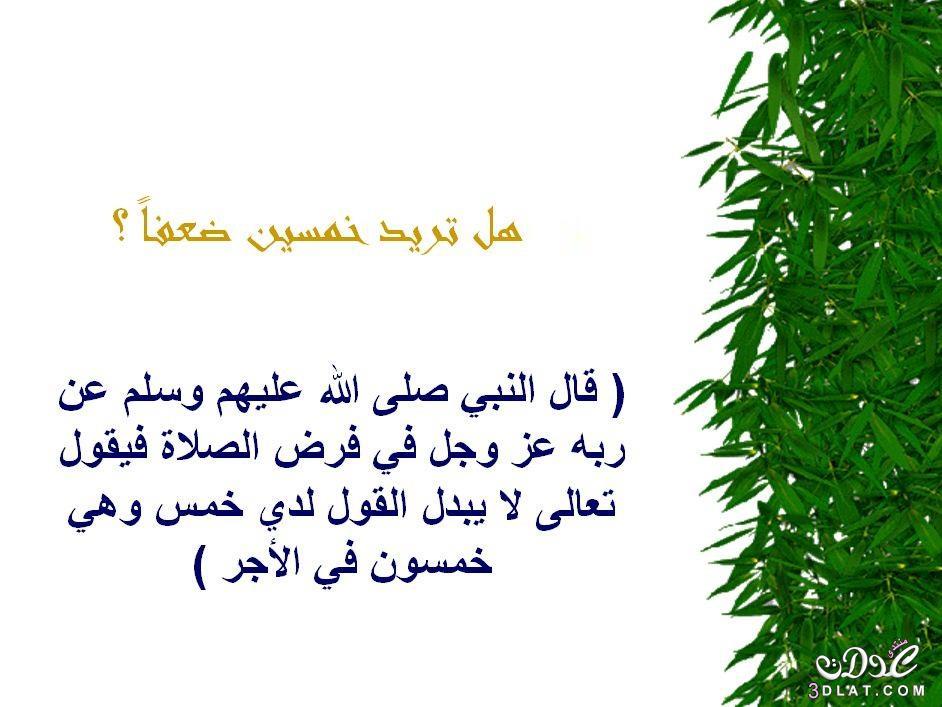 محفزات الخير 3dlat.net_05_15_f230_8.jpg
