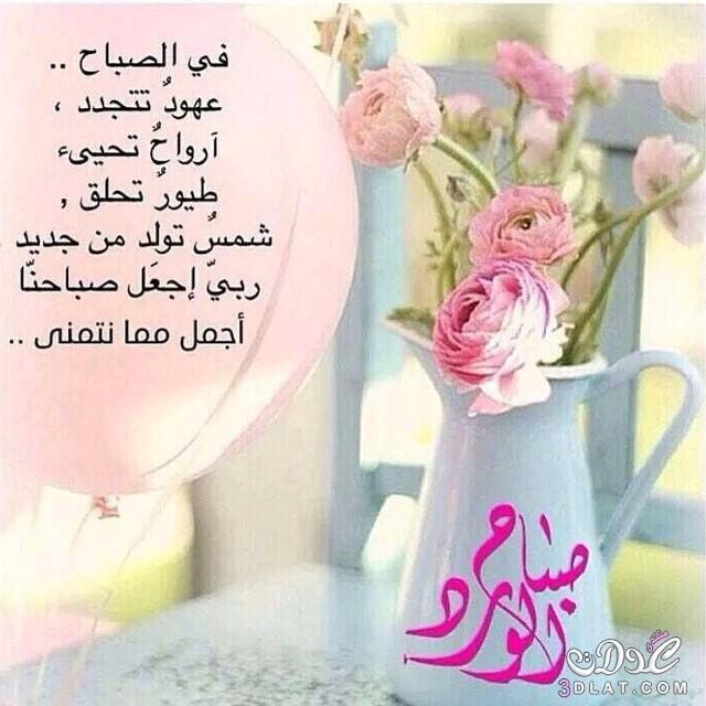 dadd5bf0b صور صباح الخير ، اجمل الادعيه الصباحيه ، كلمات للصباح المشرق ، صباح ...