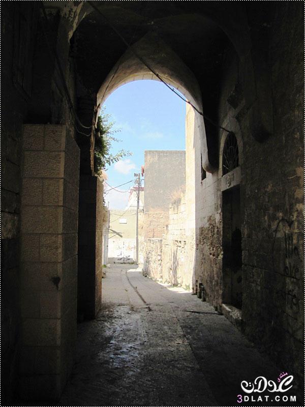 مدينة شفاعمرو الفلسطينة 3dlat.net_08_17_07ca