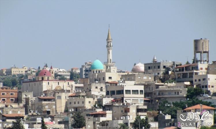 مدينة شفاعمرو الفلسطينة 3dlat.net_08_17_3f6a