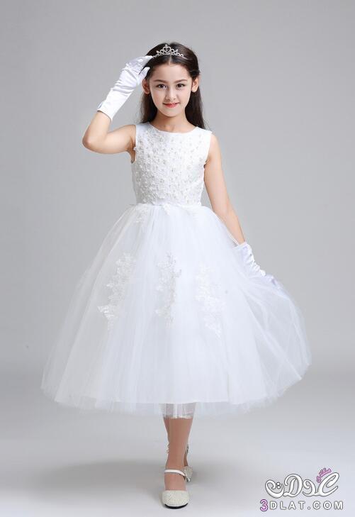 53da7fe15 اجمل صور فساتين زفاف بيضاء للاطفال , فساتين بيضاء رووووعة - نورهان 2