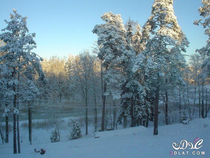 صور رائعه للثلوج , لمحبي الثلج صور جميله للثلوج , صور للثلج 3dlat.net_10_15_3398