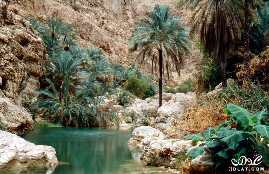 #صور [بعدستي] السياحة في سلطنة عمان 2017 اجمل الاماكن في عمان 2017 3dlat.net_11_17_21ef