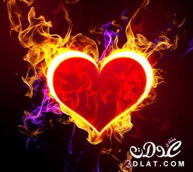 قلوب رومانسية.صور فارغة للكتابة عليها.صور حب2017 3dlat.net_11_17_913f