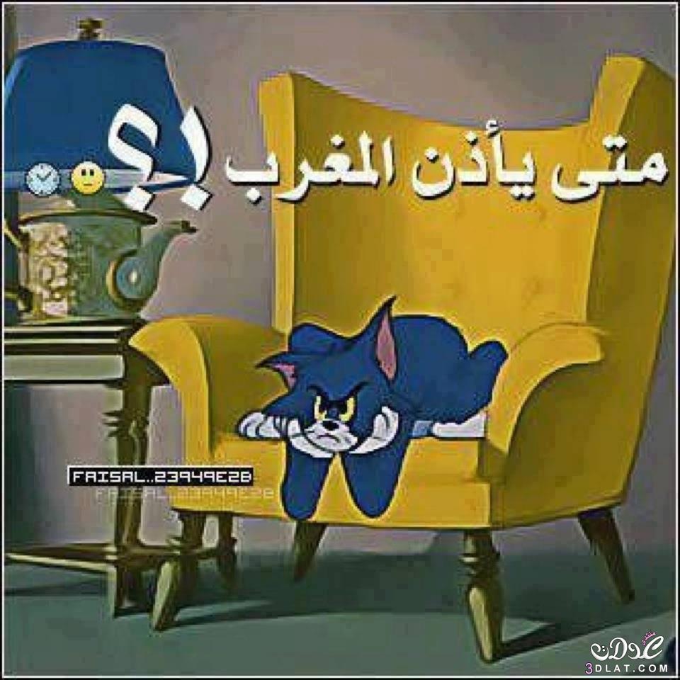 العدولات بوستات رمضانيه مضحكه ادخلى وشوفى 3dlat.net_12_15_94f2