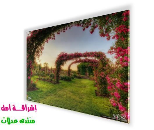 شرحي بالصور تأثيرات ثلاثية الأبعاد صورة 3dlat.net_12_17_6fc9