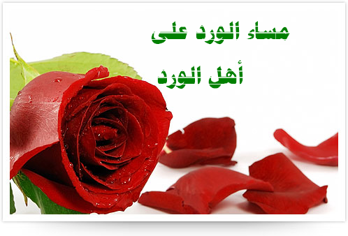 Belle Reve To Hold Chocolate Drop Bingo moreover Long Distance Letters also Promise Quotes 2011 And Sms Collection further Anniversary Letter To Husband further 460282024387149119. on sweet valentine letters