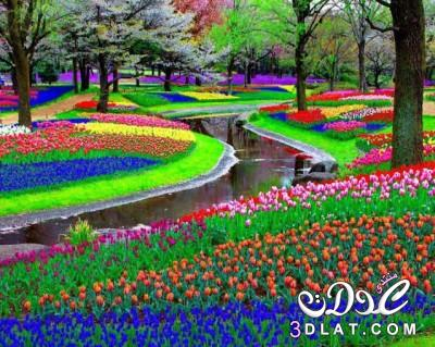 , صور احلى حدائق ممكن تشوفيها , صور حدائق طبيعيه , صور حدائق سبحان الخلاق, احلى حدائق 3dlat.net_15_15_b301