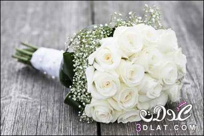 احلي مسكات للعروس 2019 بوكيهات روعة 3dlat.net_16_15_d0af