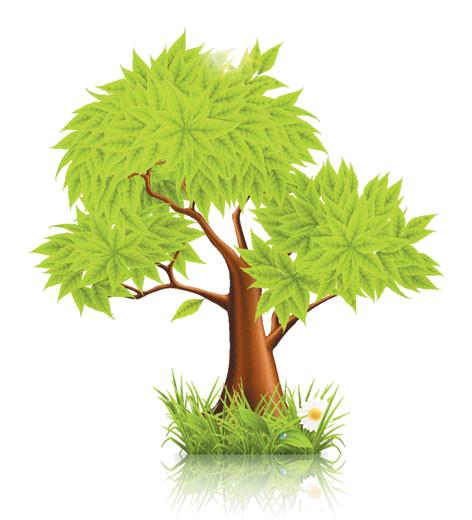 سكرابيز اوراق اشجار