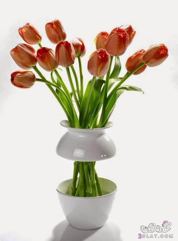 فازات للزهور روعه,فازات للزهور غريبه الشكل ,أجدد تصاميم المزهريات وأنيات الزهور 2015 3dlat.net_17_14_1853