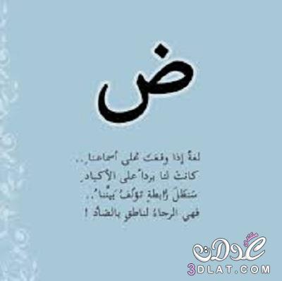 عبارات عن اللغة العربية 12