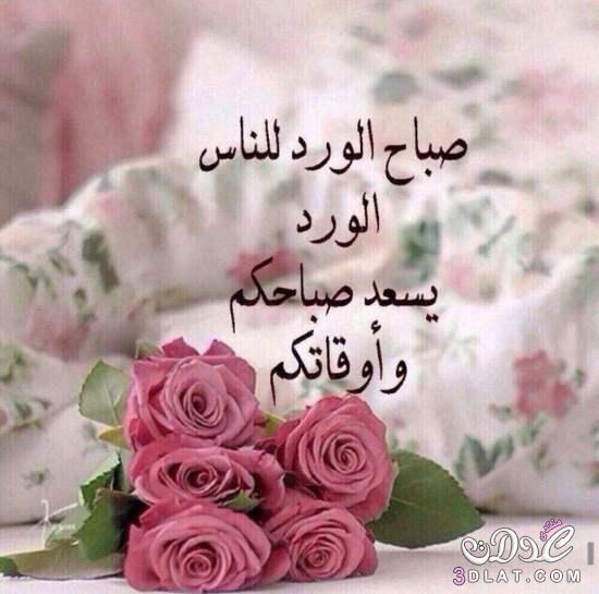 صباح الورد للناس الورد