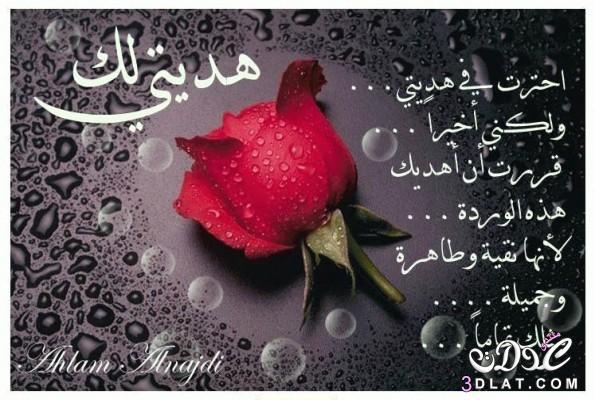 رسائل وصور مكتوب عليها ميلاد سعيد 3dlat.net_22_15_6096