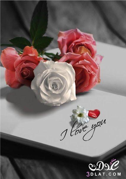 اجمل الصور الرومانسية رومانسية وعشق رومانسية 3dlat.net_23_17_18d5