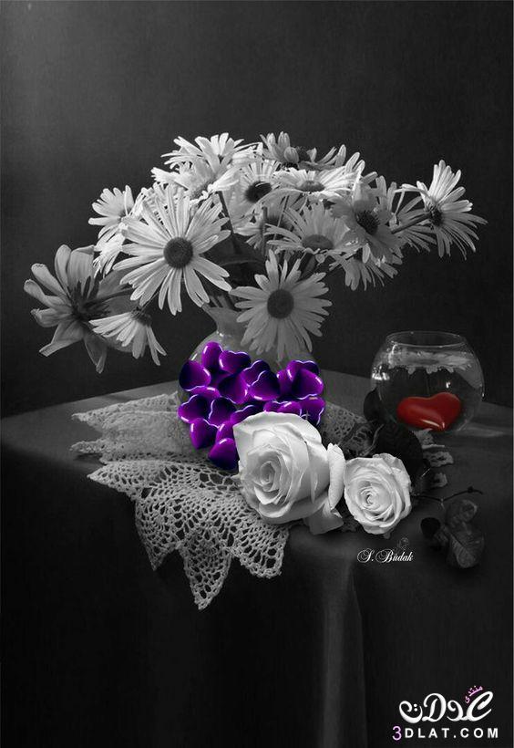 اجمل الصور الرومانسية رومانسية وعشق رومانسية 3dlat.net_23_17_257d