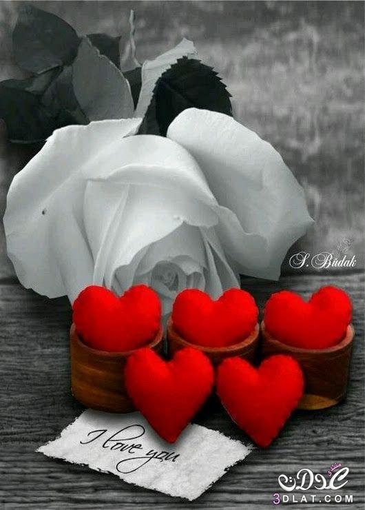 اجمل الصور الرومانسية رومانسية وعشق رومانسية 3dlat.net_23_17_312a