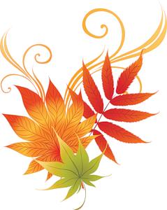سكرابز اوراق الشجر في الخريف ، اوراق شجر خريف للتصميم بدون تحميل