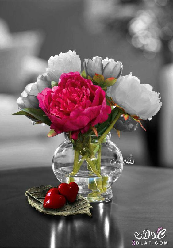 اجمل الصور الرومانسية رومانسية وعشق رومانسية 3dlat.net_23_17_551b