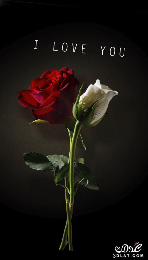 اجمل الصور الرومانسية رومانسية وعشق رومانسية 3dlat.net_23_17_9b66