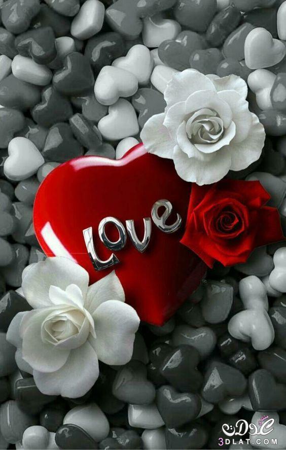 اجمل الصور الرومانسية رومانسية وعشق رومانسية 3dlat.net_23_17_a4a4