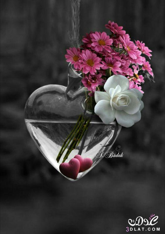 اجمل الصور الرومانسية رومانسية وعشق رومانسية 3dlat.net_23_17_c9d9