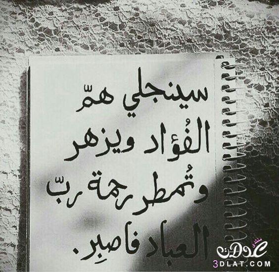 حكم وامثال عن الدنيا 2021 وكلام جميل حكم واقوال 74 حكمه رووعه