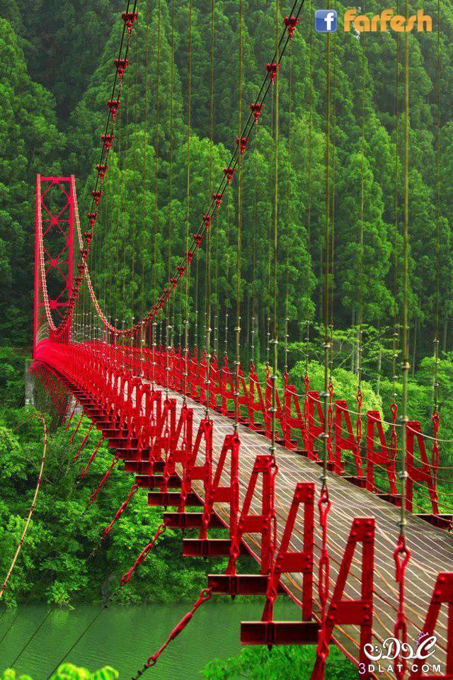 صور طبيعية ساحرة، الطبيعة جمال رباني ، صور تأخذ الألباب 3dlat.net_24_14_d64c