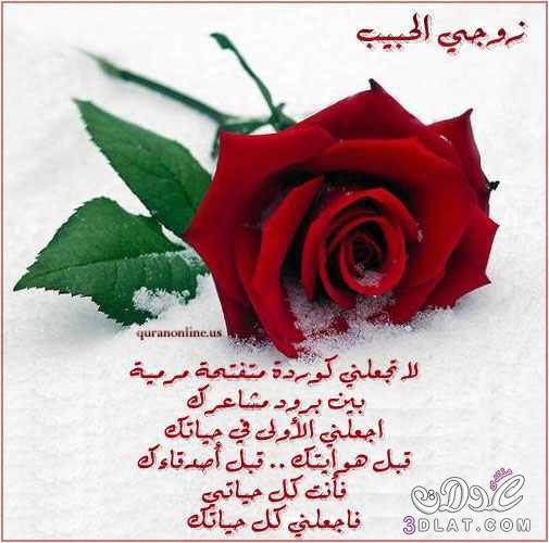 أجمل وارق رسائل وصور رومانسية للفيس 3dlat.net_25_15_4a8c