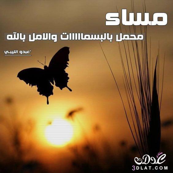 مسجات مسائية بالصور 2019 مساء الخير 3dlat.net_25_16_1353