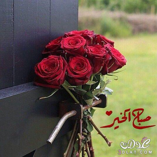 صباح الخير لصباح الخير 2019 صباح 3dlat.net_25_16_16c7