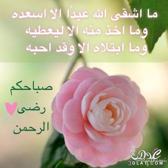 صباح الخير لصباح الخير 2019 صباح 3dlat.net_25_16_d594